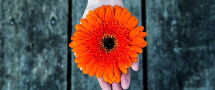 Everyone is seeking 'Positivity', Internally and Externally