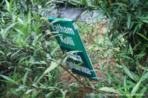 Spice Garden Kerala
