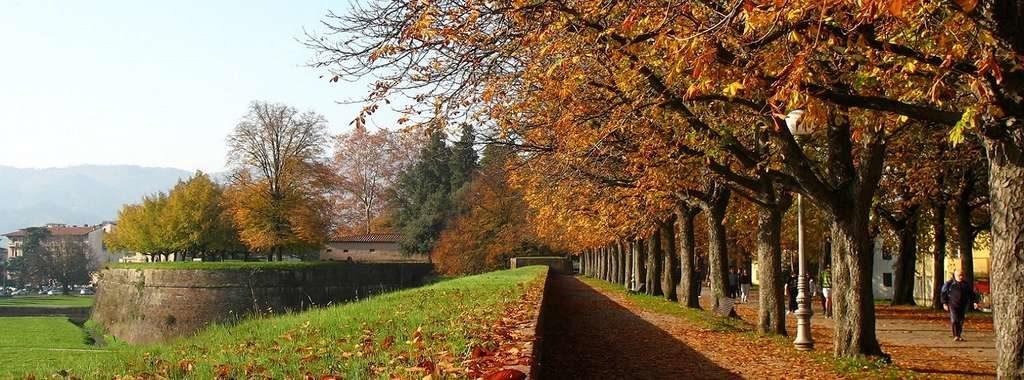 Lucca – Tuscany