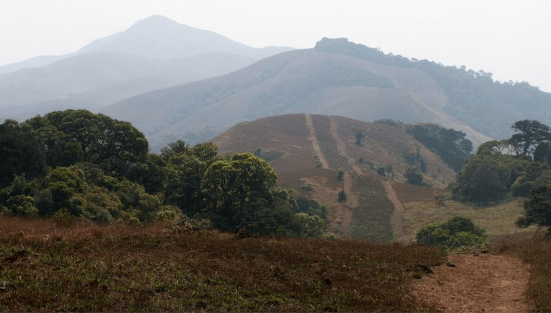 Pakshipathalam Bird Sanctuary Hike Kerala
